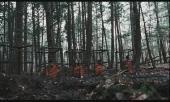 Территории / Territories (2010) DVDRip
