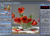 Dynamic Auto-Painter 2.5.5 + Portable x86 2011