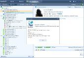 RaidCall 6.0.8 (2011)