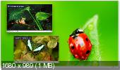 Media Player Classic HomeCinema 1.5.3.3899 Portable (Ру)