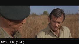 Зеленые береты / The Green Berets (1968) BDRemux