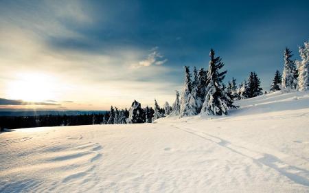 Коллекция обоев на тему Зима. Часть №1