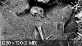 Разгадка тайн Мачу-Пикчу / National Geographic Special (BDRip 720p)
