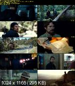 The Hunter (2011) DVDRiP XVID-AbSurdiTy