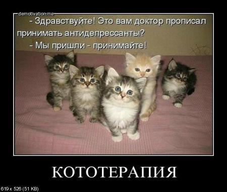 Свежая подборка фотоприколов от 16.02.2012