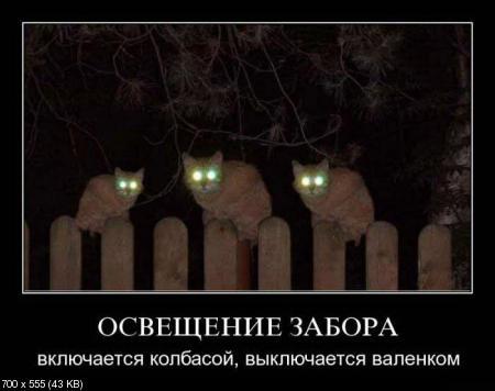Свежая подборка демотиваторов от 27.02.2012