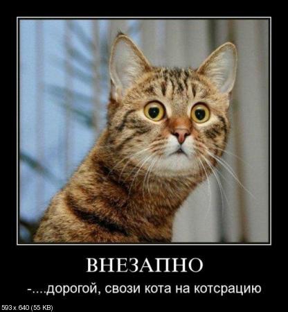 Свежая подборка демотиваторов от 21.02.2012
