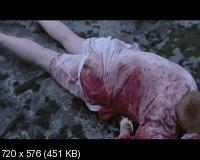 Охотники за головами / Hodejegerne (2011) DVD9 + DVD5