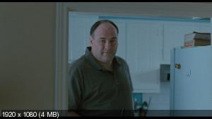 ����� ���������� � ����� / Welcome to the Rileys (2010) BD Remux + BDRip 720p + HDRip 2100/1400/700 Mb