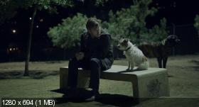 Начинающие / Beginners [2010, драма, мелодрама, трагикомедия] BDRip 720p