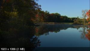 Утренняя прогулка по реке Сэйнт-Джордж / Morning Drive - St. George River (2010) BD Remux