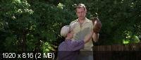 Площадка / The Sandlot (1993) BDRip 1080p / 720p + HDRip